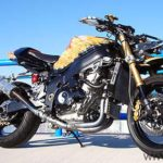 suzuki gsx-r streetfighter dragon