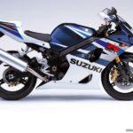 2004 Suzuki GSX-R 1000 K4 azul y blanco
