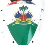 Suzuki GSXR 1000 2006 - Ayuda a Haiti