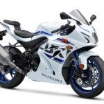 L8 Suzuki GSX-R 1000 R 2018 ficha tecnica