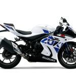 2019 Suzuki GSX-R1000/R